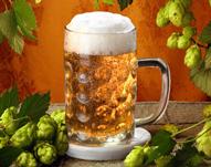 Tipps, Hinweise, Angebote zum Bierseminar in Deutschland
